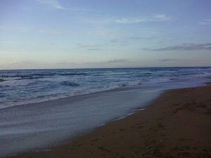 Florida Beaches - Paid Blogging, Pay Per Post